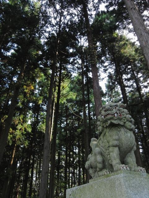 soku_04497.jpg :: PowerShotS95 建築 建造物 神社