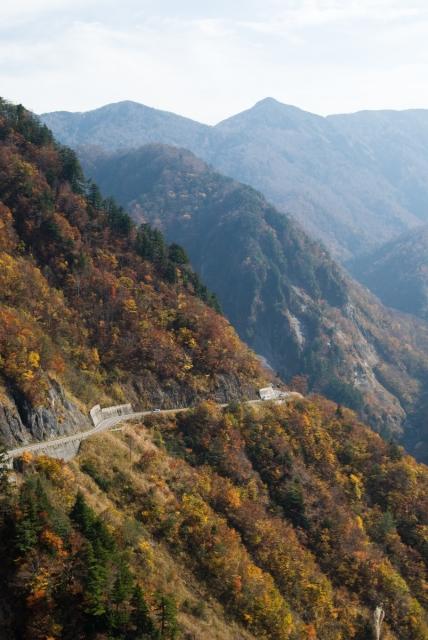 soku_09288.jpg :: 風景 自然 山 スパー林道