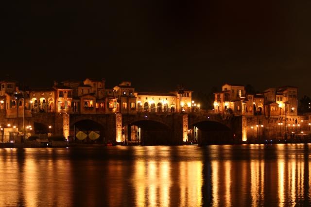 soku_10064.jpg :: 建築 建造物 夜景 ディズニーシー