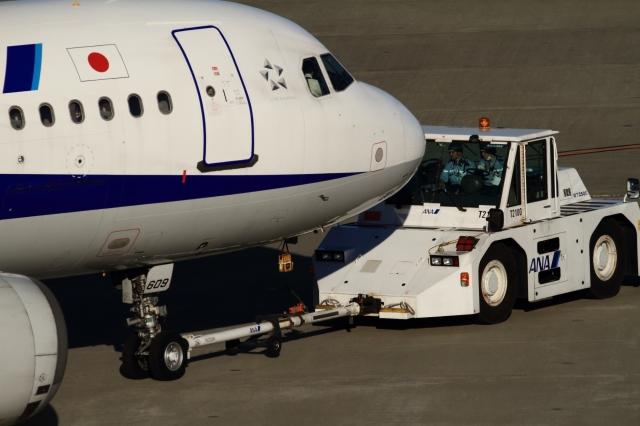 soku_34826.jpg :: ANA A321/HND 乗り物 交通 航空機 飛行機 旅客機 トーイングカー