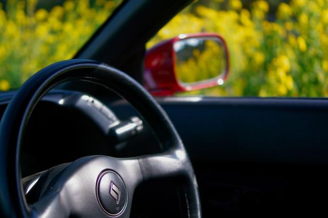 soku_34871.jpg :: 風景 郊外 車 ドライブ 菜の花 GTR