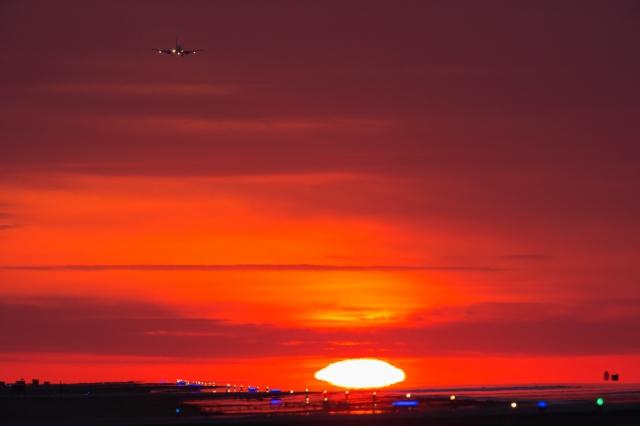 soku_34901.jpg :: 乗り物 交通 航空機 飛行機 旅客機 風景 自然 空 夕日 夕焼け 日没