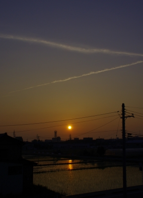 soku_01081.jpg :: 夕日 夕焼け 空 飛行機雲