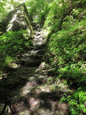 soku_02926.jpg :: PowerShotS95 自然 風景 登山 西沢渓谷 岩