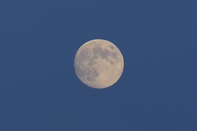 soku_03026.jpg :: 月 もうちょっとでフルフルフルムーン by Niigata