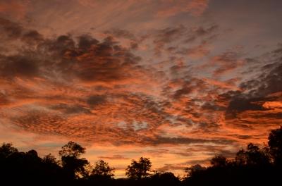 soku_03143.jpg :: 自然 風景 夕日 夕焼け 日没