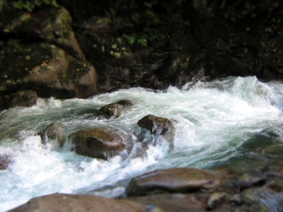 soku_03179.jpg :: PowerShotS95 自然 風景 川 河川 水分 西沢渓谷 ジオラマ ミニチュア