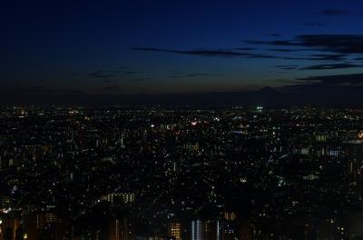 soku_03324.jpg :: 建築 建造物 高層ビル 夜景