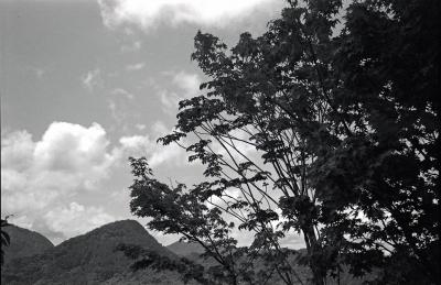 soku_04373.jpg :: 白黒 モノクロ フィルム 銀塩