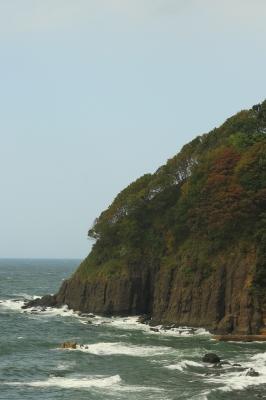soku_04672.jpg :: 自然 風景 波 海岸 紅葉 崖 by Niigata