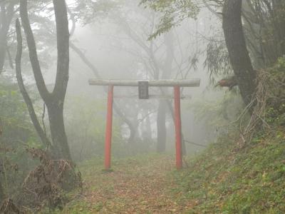 soku_05060.jpg :: 鳥居 建築 建造物 神社 仏閣 寺院 足柄峠