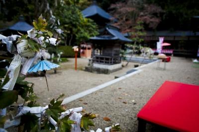 soku_05525.jpg :: 建築 建造物 街並み 神社仏閣