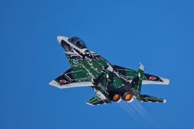 soku_07018.jpg :: 乗り物 交通 航空機 飛行機 戦闘機 F-15DJ 記念塗装