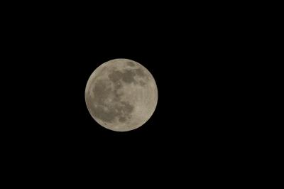 soku_07080.jpg :: 風景 自然 天体 月 満月 フルフルフルムーン by Niigata