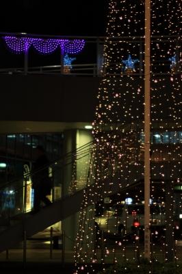 soku_07319.jpg :: 色 光 ライトアップ 紅葉 by Niigata