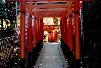 soku_07422.jpg :: 上野 上野恩賜公園 建築 建造物 街並み 神社仏閣 鳥居