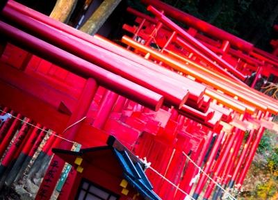 soku_08059.jpg :: 建築 建造物 街並み 神社仏閣 鳥居