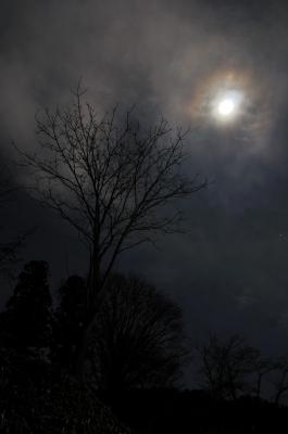 soku_08387.jpg :: 風景 自然 山 雪山 夜景
