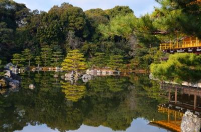 soku_08558.jpg :: 京都 金閣寺 庭園 日本庭園
