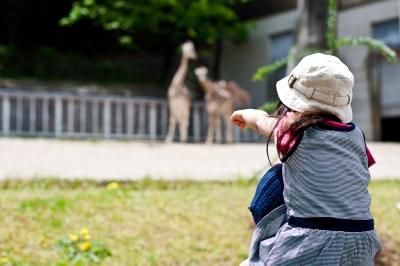 soku_08568.jpg :: 動物園 東山動物園 人物 子供 少女 女の子