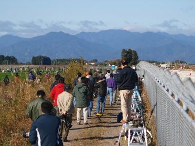 soku_09153.jpg :: 新田原基地 航空祭 基地外