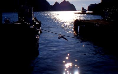 soku_09741.jpg :: 風景 自然 海