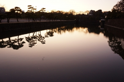 soku_09756.jpg :: 皇居 堀 水 水面