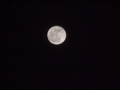 soku_10023.jpg :: 風景 自然 天体 月 満月