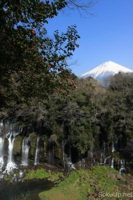 soku_10053.jpg :: 風景 自然 山 富士山