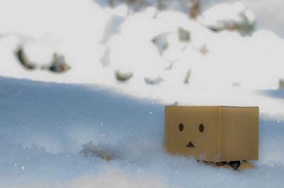 soku_10360.jpg :: 風景 自然 雪景色 アート 工芸品 フィギュア ダンボー