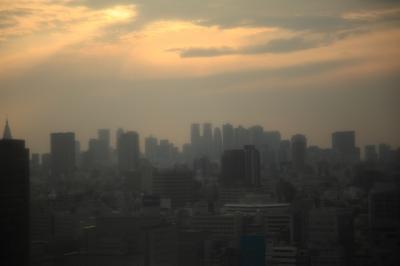 soku_10917.jpg :: The MAD CITY 建築 建造物 高層ビル 新宿