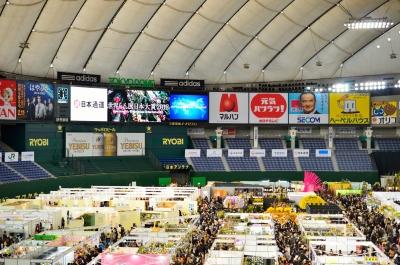 soku_11163.jpg :: 植物 花 蘭 ラン 世界らん展日本大賞2012