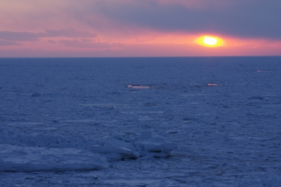 soku_11603.jpg :: 風景 自然 海 流氷 夕日 夕焼け 日没