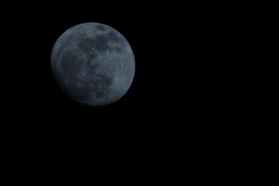 soku_11856.jpg :: 風景 自然 天体 月