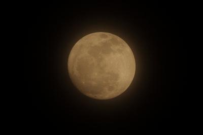 soku_11939.jpg :: 風景 自然 天体 月 満月 フルフルフルムーン by Niigata