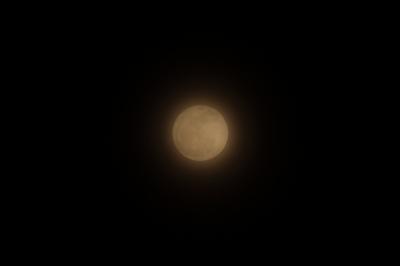 soku_11976.jpg :: 風景 自然 天体 月 満月 フルフルフルムーン by Niigata