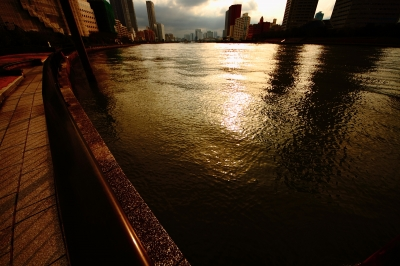 soku_12034.jpg :: 風景 自然 海 海面 光 逆光