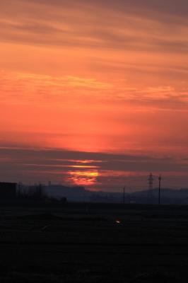 soku_12542.jpg :: 風景 自然 空 夕日 夕焼け 日没 by Niigata