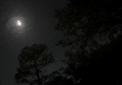 soku_12544.jpg :: 風景 自然 水面 光 反射 モノクロ 夜景