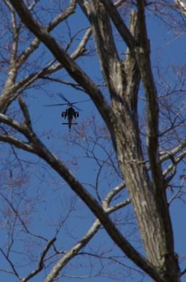 soku_13401.jpg :: 乗り物 交通 航空機 ヘリコプター コブラ