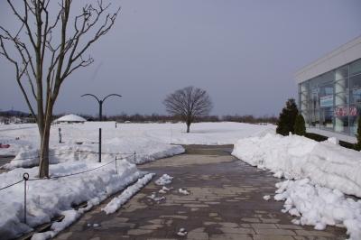 soku_13726.jpg :: 風景 自然 雪景色