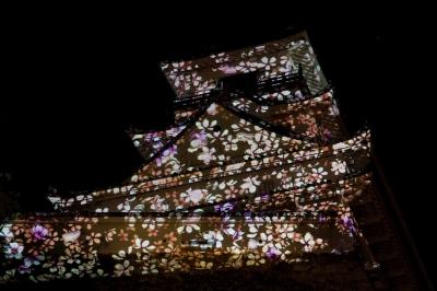 soku_13946.jpg :: 高知城花回廊 建築 建造物 城 高知城 色 光 ライトアップ