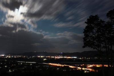 soku_13976.jpg :: 植物 花 桜 サクラ 夜桜 月夜