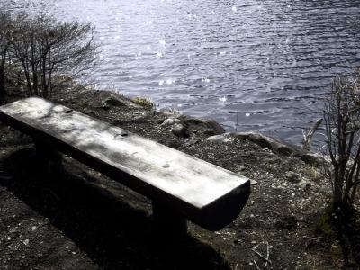 soku_14815.jpg :: PowerShotS95 風景 自然 水分 ベンチ ベンツ(?) 湖 碓氷湖 コンデジ埼玉 lock