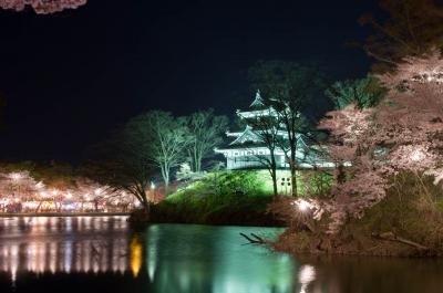 soku_14998.jpg :: 夜桜 高田城