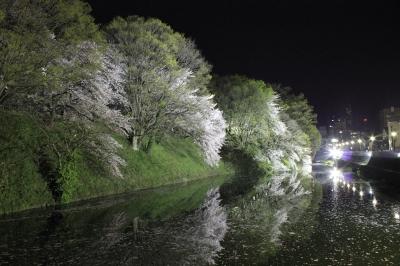soku_15271.jpg :: 夜景 桜 川
