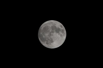 soku_15717.jpg :: 風景 自然 天体 月 満月 スーパームーン