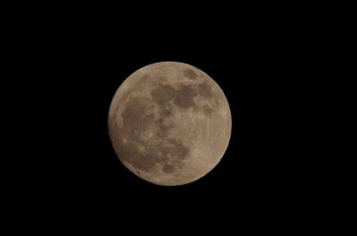 soku_15732.jpg :: 風景 自然 天体 月 満月 スーパームーン 換算1260㎜