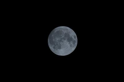 soku_15751.jpg :: 風景 自然 天体 月 満月 スーパームーン