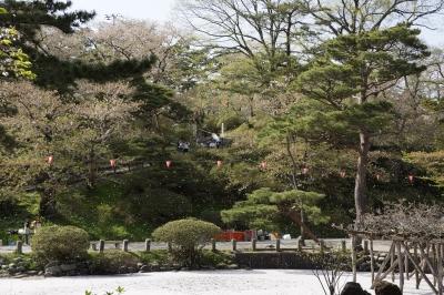 soku_15943.jpg :: 公園 庭園 日本庭園